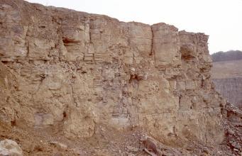 Die Ansicht zeigt eine rötlich braune bis graue Gesteinswand. Gröbere Brocken wechseln sich ab mit feinerem Material. Am unteren Bildrand sowie rechts sind Schuttansammlungen erkennbar. Die ganze Wand ist ohne Pflanzenwuchs.