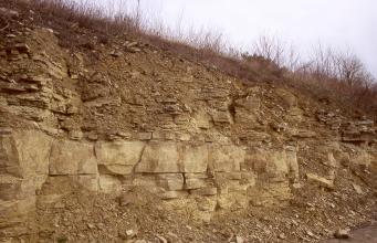 Ansicht einer nach rechts abfallenden Böschung mit in der unteren Hälfte offen liegenden, braunen Gesteinsblöcken.