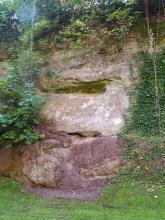 Blick auf eine zweigeteilte Felswand mit hellgrauem, glattem Teil oben und blaurotem, versetztem Teil unten. Die Wand zeigt rundum Bewuchs und steht auf einer Wiese.