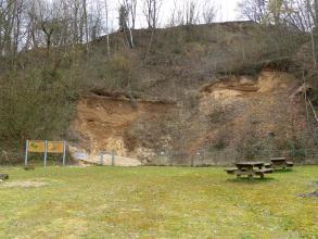 Blick auf eine hohe bewaldete Böschung mit teils freigelegtem Gesteins- und Bodenmaterial. Die Gesteinswand ist mit einem Zaun gesichert und von zwei Schautafeln ergänzt. Im Vordergrund eine abgetretene Wiese mit Rastplätzen.