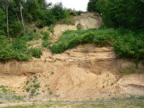 Blick auf die eingezäunte Abbauwand einer Sandgrube. Das hellbraune bis rötlich braune Material ist im oberen Bildteil stark zugewachsen.