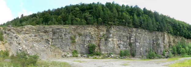 Panoramaansicht einer grauen Steinbruchwand. Links ist Material abgerutscht. Über der Kuppe erhebt sich halbmondförmig dichter Wald.