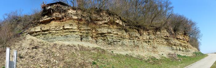Panoramabild einer Wegböschung mit offenliegendem, waagrecht gebanktem Gestein. Die Kuppe der Böschung ist mit Bäumen bestanden.