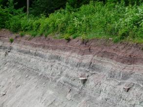 Seitliche Ansicht einer Steinbruchwand mit waagrecht gebankten Schichten in violett und grau. Auf der Kuppe steht Gebüsch.