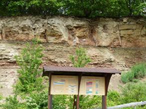 Das Bild zeigt mehrere Schichten eines rötlich braunen Gesteinsaufschlusses. Kuppe und Fuß des Aufschlusses sind bewachsen. Im Vordergrund stehen zwei überdachte Schautafeln.