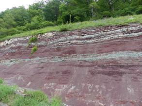 Blick auf eine leicht abgeschrägte, nach rechts ansteigende Böschung mit offenliegendem Gestein. Das überwiegend violett gefärbte Material wird von mehreren dünnen, hellgrauen Bändern durchzogen, vor allem nahe der mit Gras bewachsenen Kuppe.