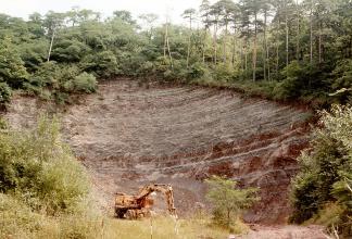 Das Bild zeigt eine hohe, schräg nach rechts abfallende Steinbruchwand. Die Wand hat sichelförmige Farbstufen von Grau zu rötlichem Braun und ist von dichtem Wald umgeben. Im Vordergrund steht ein Bagger.