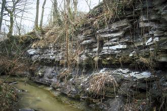 Seitlicher Blick auf eine Felsböschung entlang eines schmalen Baches. Das freiliegende, graue Gestein ist plattig, von Furchen durchzogen und bewachsen.