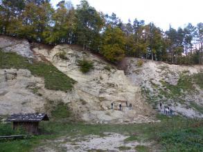 Aufg. Suevit-Steinbruch Altenbürg S von Utzmemmingen