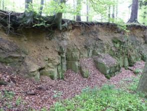 Blick auf eine oben mit Bäumen bestandene flache Böschung. Im unteren Teil liegen graugrüne Blocksteine auf, die zum Teil mit verwelktem Laub bedeckt sind.