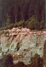 Blick auf eine Steinbruchwand an einem Waldhang. Unterhalb der gerundeten Kuppe liegen rötlich graue, waagrecht gebankte Schichten, gefolgt von grünlichem, zerfurchtem Fels. Am Fuß des Bruches liegt ein Schutthaufen.