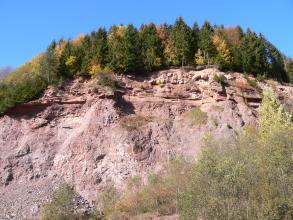 Blick auf eine mächtige, rötlich graue Steinbruchwand mit von Bäumen bestandener Kuppe. Oben sind waagrechte Bänke erkennbar. Darunter folgt großflächiger, schrundiger Fels. Links unten ist Abraumschutt zu sehen, rechts stehen Bäume.