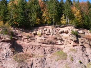 Ausschnitt aus einer Steinbruchwand mit bewaldeter Kuppe und rötlich grauem, im oberen Teil waagrecht gebanktem Fels.