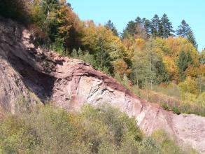 Das Bild zeigt eine von links oben nach rechts unten verlaufende, rötlich graue Gesteinswand. Links ist unter gerundeten Bänken eine größere Nische erkennbar. Der Kuppe folgt im Hintergrund dichte Bewaldung. Im Vordergrund stehen Bäume und Buschwerk.
