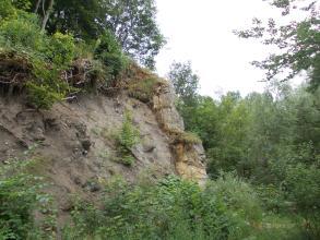 Blick auf eine links hinter Gebüsch aufsteigende, dunkelgraue Steinwand mit rechts angelehnten, stufenförmigen Felsblöcken aus hellerem Material. Kuppe und Hintergrund rechts sind bewaldet.