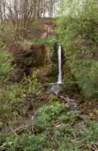Das Bild zeigt einen, im Vordergrund von Bäumen und Gebüsch eingerahmten, über einen Waldhang stürzenden schmalen Wasserfall.