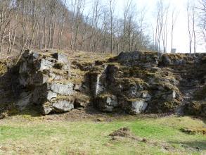 Blick auf treppenartig aufgebaute Felsmauern oberhalb einer flachen Wiese. Über dem Felssims steigt links ein mit dünnen Bäumen besetzter Hang auf.