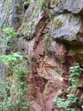Seitenansicht von vertikal verlaufenden, blättrigen Gesteinsschichten in rötlichen bis grauen Farbtönen. Unten links und rechts ragen Sträucher ins Bild.