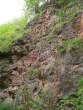 Blick auf eine nach rechts ansteigende, mit Moos, Gras und Sträuchern bewachsene, rötlich graue Felswand.