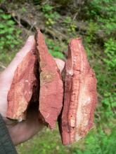 Großaufnahme von drei etwa handgroßen Bruchstücken rötlichen Gesteins.