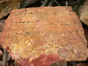 Blick auf eine Gesteinsplatte mit orangeroter bis unten dunkelroter Färbung.