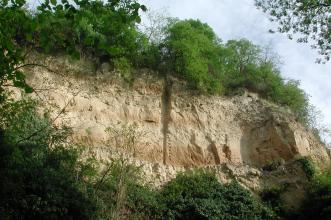 Blick auf eine hellbraune Lösswand mit starkem Bewuchs an Fuß und Kuppe. In der Bildmitte ist eine vertikale Furche erkennbar, rechts bildet die Wand eine Art Erker. Auf der Oberfläche sind zudem drei dunklere Bänder erkennbar.