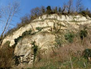 Das Bild zeigt einen nach rechts ansteigenden, mehrfach abgestuften, weißlichen bis hellbraunen Lössberg. Am Fuß des Berges sowie auf der Kuppe stehen Bäume und Sträucher.