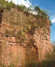 Das Bild zeigt die hoch aufragende Wand eines Steinbruches. Das rötliche Gestein ist teils glatt, teils unregelmäßig geformt und hat Spalten und Risse. Die Kuppe ist mit Bäumen bestanden.
