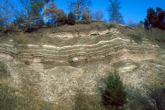 Blick auf einen hohen, oben abgrundeten Felsenhang mit braunen, grauen und weißlich gebankten Lagen. Das untere Drittel besteht aus Rutschmassen. Auf der Kuppe des Felshanges sowie unten stehen einzelne Bäume.