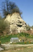 Auf dem Bild ist ein kegelförmiger Berg aus hellbraunem Gestein zu sehen. Die Kuppe und linke Seite ist mit Bäumen und Sträuchern bewachsen. Unterhalb des Berges verläuft ein Wiesenhang. Auf ihm steht ein Gewächshaus.