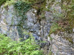 Seitlicher Blick auf graublaue, hohe Gesteinswände. Das Gestein weist waagrechte, in der Bildmitte auch senkrechte Schichtungslinien auf. Der obere Teil des Gesteins sowie der Fuß sind stark von Pflanzen überwuchert.