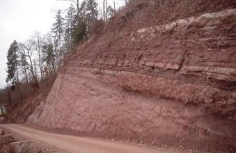 Entlang eines nach rechts ansteigenden Weges erhebt sich eine hohe, oben bewaldete Böschung mit offenliegendem Gestein. Das Gestein ist stark rötlich gefärbt und weist unterschiedliche, nach rechts geneigte Schichtungen auf.