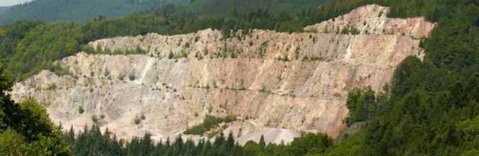 Blick auf eine große, langgezogene Steinbruchwand mit mehreren Sohlen. Das Gestein ist gelblich bis rötlich grau. Die Seiten sowie die Kuppe des Steinbruches sind bewaldet.