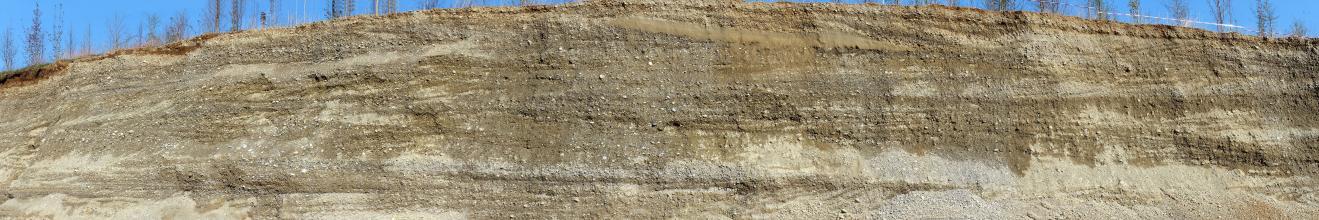 Panoramafoto einer Kiesgrubenwand in Fronatalansicht. Die einen Bogen beschreibende, links niedrigere Wand zeigt eine bräunlich graue Färbung und weist neben Kieslagen auch glatte, streifige Stellen auf, etwa oberhalb der Bildmitte.