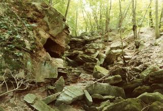 Das Foto zeigt ein Waldtal mit vorstehendem Felsgestein links und Blockschutt bis zum Vordergrund.