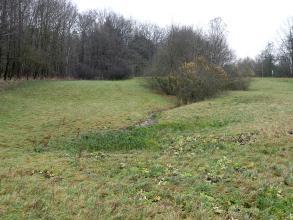 Blick auf eine flache Vertiefung auf einer Wiese. Im Hintergrund steht Wald, davor ein kleines Gehölz. Zwischen Gehölz und Vertiefung fließt ein schmaler Bach.