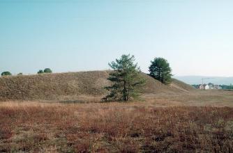 Auf einer rotbraunen, flachen Heide mit einzelnen Bäumen erheben sich zwei nach links geneigte, grünlich braune Hügel oder Dünen.