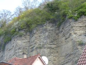 Blick auf eine wellenförmig verlaufende, steile Felswand. Das graue Gestein, hinter Hausdächern sichtbar, ist durch mehrere eng anliegende Drahtgitter gesichert. Das obere Ende der Felsen ist bewachsen.