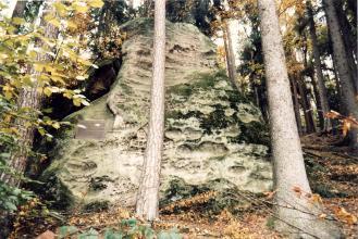 Blick auf einen breiten, sich nach oben verjüngenden Felsen. Der graue, teilweise bemooste Felsen steht an einem Waldhang. Der untere Teil seiner Oberfläche weist kleine und größere, teils ovale Vertiefungen auf.