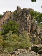 Hinter einigen Bäumen steigen senkrechte, rötlich braune, zerfurchte Felstürme auf. Im Vordergrund rechts liegt eine Schutthalde.