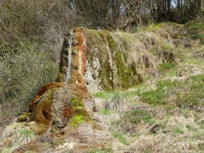 Auf einem nach rechts ansteigenden, dicht bewachsenen Hang erhebt sich ein schmaler, länglicher Felsen, der einem liegenden Tier ähnelt. Der stark bemooste Felsen ist am Kopf rostbraun. Ein dünner Wasserstrahl fließt dort entlang nach unten.