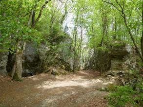 Das Bild zeigt eine von mittelhohen Felswänden gebildete, bewaldete Schlucht. Ein Waldpfad führt in einem Bogen auf den Betrachter zu. Links weist das Gestein knollige Auswüchse und Bemoosung auf, rechts steht eine Art Nase hervor.