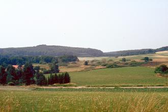 Unter einem blassen Himmel erstreckt sich eine hügelige Landschaft, die teils mit Wald, teils mit Feuchtwiesen und Heideflächen bedeckt ist.