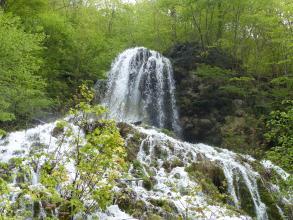 Blick auf einen hohen, kegelförmigen Wasserfall, der sich im Vordergrund bildfüllend verbreitert. Im Hintergrund rechts, neben dem Wasserfall, erhebt sich ein bewaldeter Felsenhang.