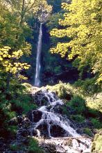 Blick auf einen zweigeteilten, von Wald umgebenen Wasserfall. Im Hintergrund stürzt das Wasser aus großer Höhe hinab, im Vordergrund fließt es über mehrere, treppenartig aufgebaute flache Stufen weiter.
