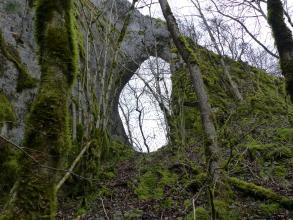 Blick auf eine an einem Hang stehende, von links nach rechts abfallende, dunkelgraue Felswand mit einem ovalen Durchlass in der Mitte. Rechts und links der Öffnung stehen dünne Bäume, die rechte Seite der Felswand ist zudem stark bemoost.