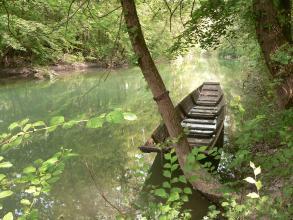 Blick auf einen grünlichen, breiten Wasserlauf, in dem sich die beidseitig bewaldeten Ufer spiegeln. im Vordergrund rechts ist ein hölzerner Kahn festgemacht.