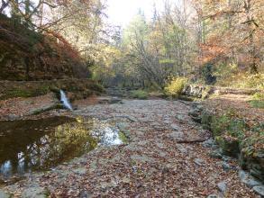 Blick auf eine breite, links und rechts von Felsböschungen und Bäumen gesäumte Klamm. Das Bett der Klamm wird von einer Gesteinsfläche gebildet, die links und zum Hintergrund hin von Wasser überspült ist. Der linke Teil der Klamm liegt im Schatten.