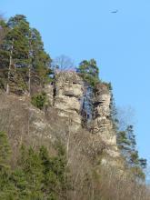 Blick auf zwei hellbraune bis graue, an einem bewaldeten Steilhang stehende Felsnadeln. Die Felsnadeln bestehen aus aufeinander geschichteten Blöcken, die rechte ist oben abgeflacht und trägt eine Aussichtsplattform. Oben rechts kreist ein Greifvogel.
