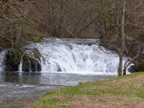 Das Bild zeigt einen zwischen Waldhängen hervorkommenden, breiten Wasserfall, dem zum Vordergrund hin flaches Wasser folgt. Links am Bildrand stehen große Felsen, die nur wenig überspült werden. Rechts schiebt sich ein mit Gras bewachsenes Ufer ins Bild.